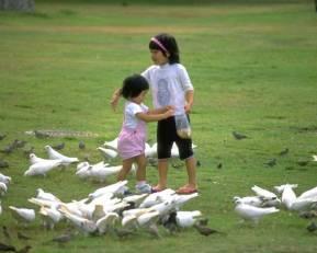 kids_feeding_birds