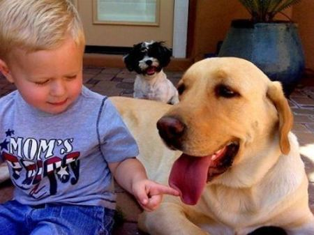 kids animals