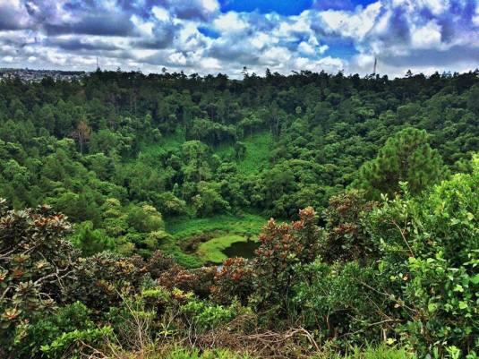 Au Pair S. Africa 14.jpg